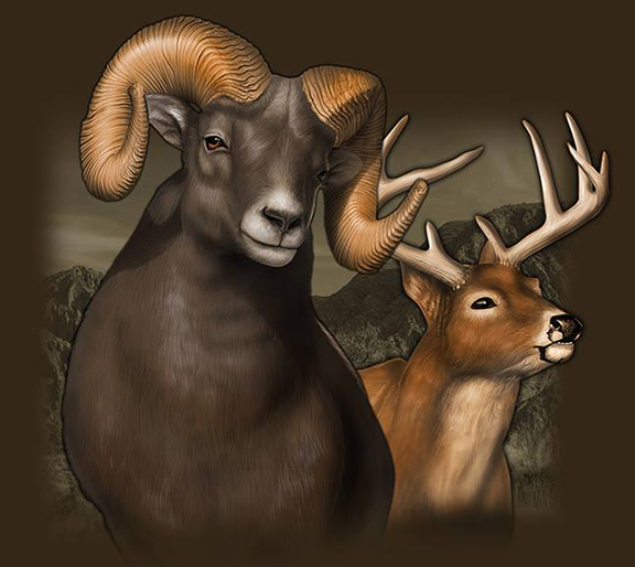 Ram and deer